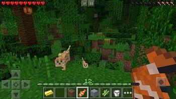 Minecraft Pocket Edition Server Test und Preisvergleich.
