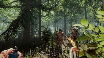 The Forest Server Test und Preisvergleich.