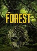 Die besten Slot Preise für the Forest Server im Preis Leistungsvergleich!